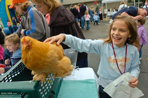 Girl petting a chicken